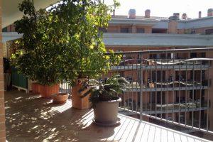 AC_ Parco Leonardo Bramante 06